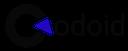 Codoid